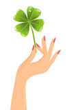Hand with clover leaf Stock Images