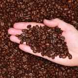 Hand with coffee beans Royalty Free Stock Photo