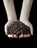Hand with coffee beans Stock Images