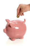 Hand, Coin and Piggy Bank Royalty Free Stock Photo