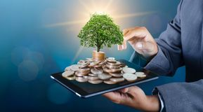 Free Hand Coin Tree The Tree Grows On The Pile. Saving Money For The Future. Investment Ideas And Business Growth Background With Bokeh Royalty Free Stock Image - 150248586
