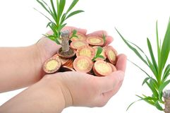 Hand and coins with plant Royalty Free Stock Photos