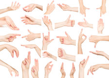 Hand collage Stock Photography