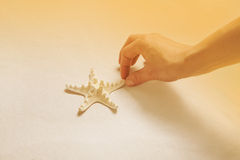 Hand collecting starfish on the beach. Summer holiday concept or Stock Image