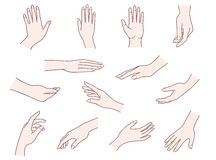 Hand collection. Vector illustrations pack of woman hands in various gestures Stock Images