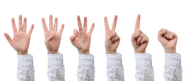 Hand count zero to five. Isolated royalty free stock photos