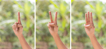 Hand of counter number one  gesture Royalty Free Stock Photos