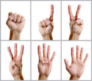 Hand counting Stock Images