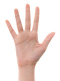Hand counting: five Stock Images
