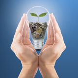 Hand cover growing money with bulb idea Stock Photography