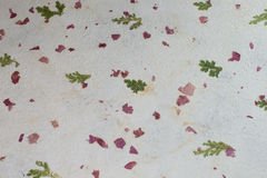 Hand crafted ecofriendly paper. White Vegetal paper texture with leaves and petals Stock Photos