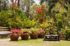 Hand Crafted Wood Bench in Lush Tropical Garden Royalty Free Stock Photo