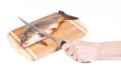 Hand cutting fresh fish on the board. On white background Stock Photo
