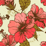 Hand dawn hibiscus flowers seamless pattern. All objects are conveniently grouped on different layers and are easily editable Stock Image