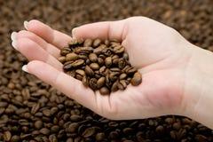in Hand de Bonen van de koffie Stock Foto