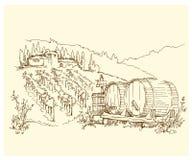 Hand - de gemaakte gebieden en de wijngaarden van de schetsdruif Royalty-vrije Stock Fotografie