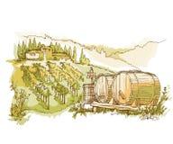 Hand - de gemaakte gebieden en de wijngaarden van de schetsdruif Stock Fotografie