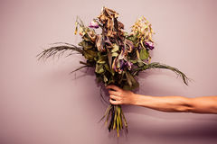 Hand with dead flowers. A woman's hand is holding a bouquet of dead flowers Royalty Free Stock Photo