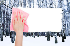 Hand deletes winter birch trees by pink rag Stock Photo