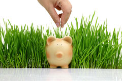 Hand deposit money in piggy bank Royalty Free Stock Photo