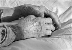 Hand der alten Frau Stockfoto