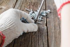 Hand der Arbeitskraft schraubt in einen Holzklotz mit einem Schraubenzieher Stockbilder