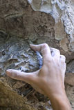 Hand des Bergsteigers Stockbild