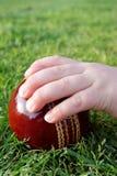 Hand des Kindes auf einer Kricketkugel lizenzfreies stockfoto