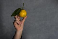 Hand des Mädchens und der Orange Stockfoto