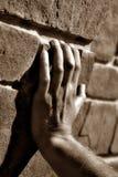 Hand des Mannes Stockbilder