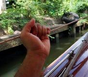Hand des Mannes, die ein zum Seil anhält Stockbild