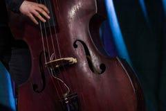 Hand des Musikers auf dem elektrischen aufrechten Baß am Livekonzert lizenzfreie stockfotos