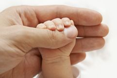 Hand des Schätzchens Lizenzfreies Stockfoto