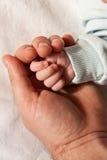 Hand des Schätzchens, die in der Palme des Vaters sucht Stockfotografie