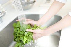 Hand des waschenden Gemüses der Frau Stockfotos