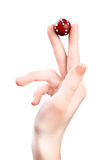 Hand with dice Royalty Free Stock Photo