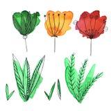 Hand, die Aquarell Blumen und leafes ertrinkt lizenzfreie abbildung