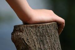 Hand, die auf Bauholz sich lehnt Lizenzfreie Stockbilder