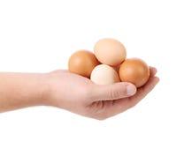 Hand, die braune Eier hält Lizenzfreie Stockfotos