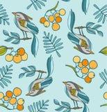 Hand die decoratieve naadloze achtergrond met vogels, bessen a trekken Royalty-vrije Stock Foto