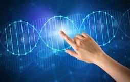Hand, die DNA-Molekül berührt Stockfoto