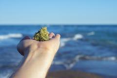 Hand die een cannabis houden nug tegen oceaangolven en blauwe hemellan royalty-vrije stock afbeeldingen