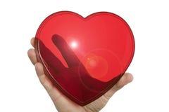 Hand die een duidelijk rood die hart houden op wit wordt geïsoleerd Stock Foto
