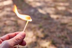 Hand die een gelijke op brand in het bos houden stock afbeelding