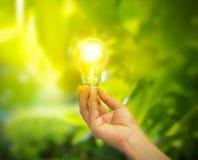Hand die een gloeilamp met energie op verse groene aardachtergrond houden Stock Foto