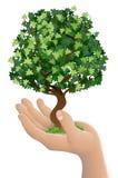 Hand die een het groeien boom houdt Stock Afbeeldingen