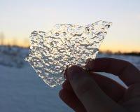 Hand die een ijsplaat houden royalty-vrije stock afbeeldingen