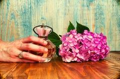 Hand die een parfum en hydrangea hortensia houten achtergrond houden Stock Afbeelding