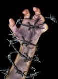 Hand die een prikkeldraad grijpt Stock Foto