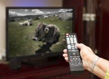 Hand die een TV-afstandsbediening naar de televisie richten. Royalty-vrije Stock Foto's